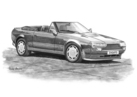 AM Vantage Zagato Volante Black & White
