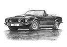 AM V8 Volante PoW Black and White