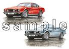 Aston Martin V8 Coupe and Volante